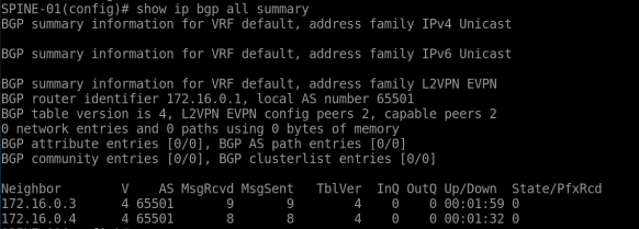 BGP-all-summary-1.1