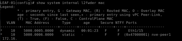 show-mac-address-table